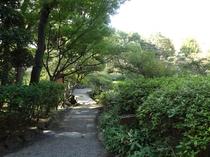 旧安田庭園(ホテルより徒歩30分)