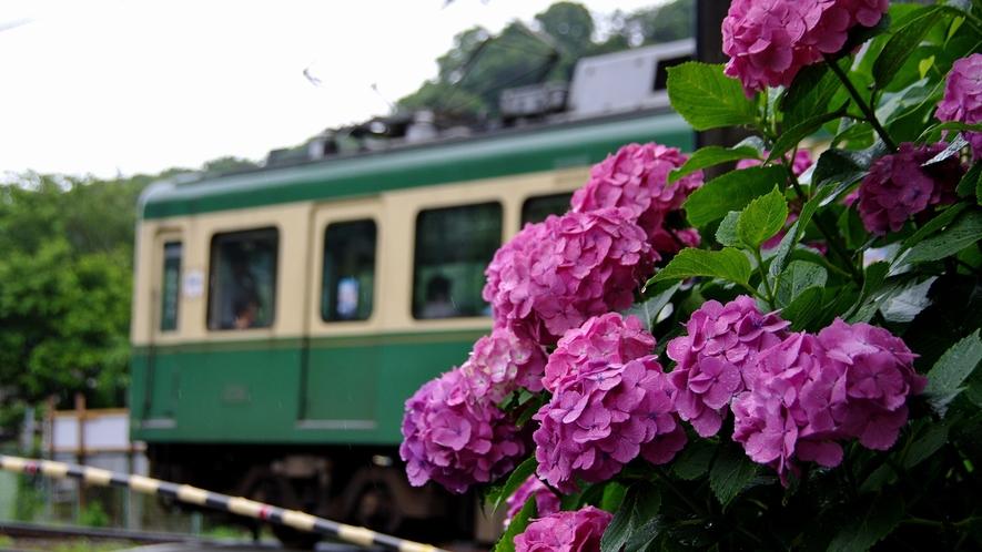 *【江ノ電】最寄りの由比ガ浜駅は当館から徒歩3分