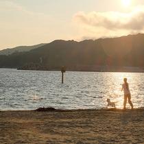 周辺景色:夕景の砂浜はお散歩コースにピッタリです!