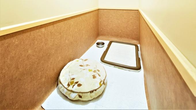 【ドッグホテルfeliceに泊まる】わんちゃんにはカメラ付デラックスルームを!駐車場無料(朝食付)