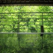 四季折々の花や緑、せせらぎと温泉につかりリラックス。