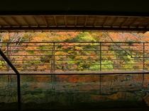渓流沿い露天(紅葉)