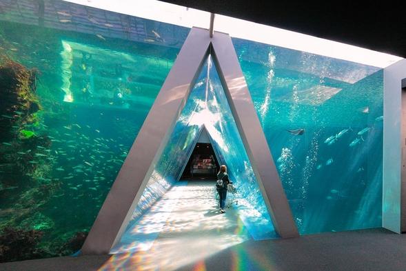 【海を感じる♪】★アクアマリンふくしまチケット付き★【朝食なし】《大浴場完備・加湿空気清浄機有》