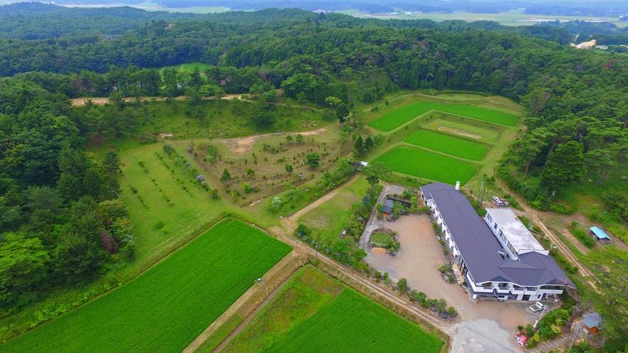 目の前の田んぼで天のつぶを自家栽培しています。