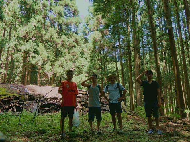 周辺の木々に囲まれて森林浴(^o^)