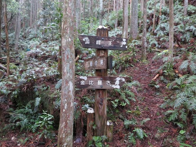 熊野古道「大日超」で熊野本宮大社まで歩いて70分です!