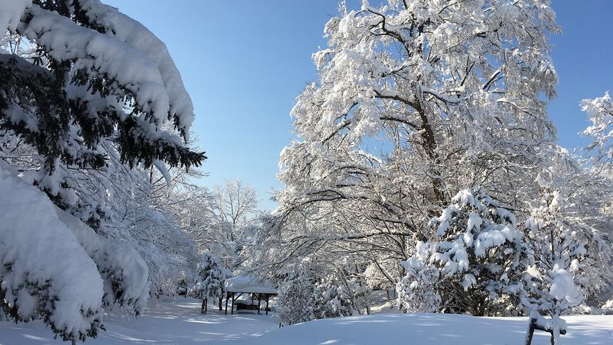 冬のカルルス温泉