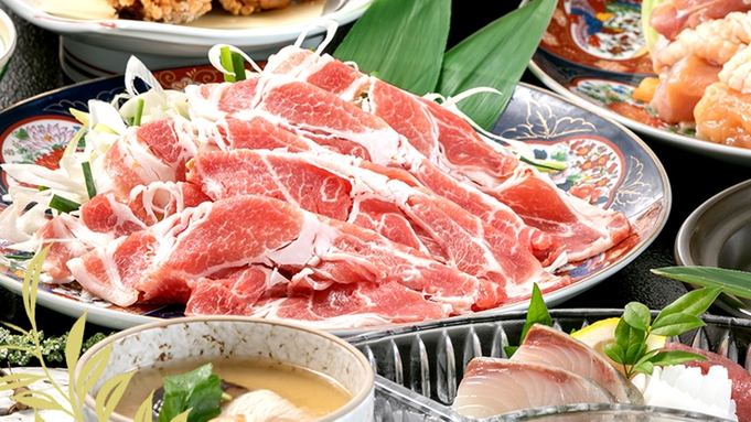 【GOGO九州!県民限定】のどかな町で「避密の旅」はかた地鶏の水炊き+豚しゃぶのグレードアップコース