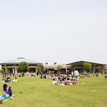 周辺観光~ふれあい農業公園~