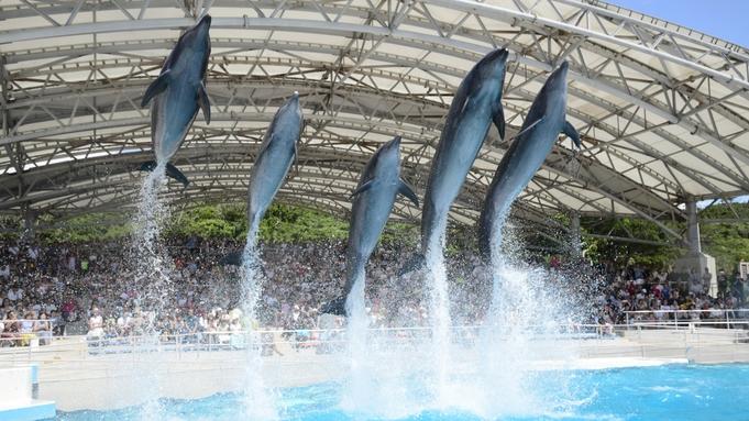 【美ら海水族館チケット付】「1度は行きたい水族館」ジンベイザメに会いに行こう!(朝食付)