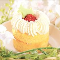 愛犬のお誕生日祝いを!(予約時 要連絡)愛犬用無添加手作りバースデーケーキ&お写真のプレゼント ♪