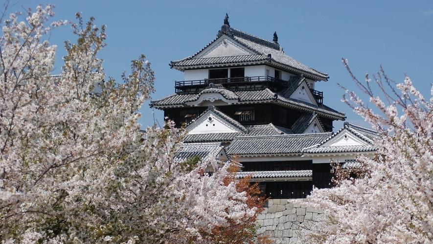松山城(春)