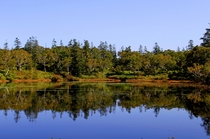 新緑から紅葉まで美しい神仙沼