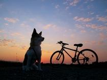一緒に自転車でお散歩