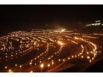期間限定のイベント大山千枚田の棚田の夜祭り 風景