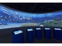 【鴨川シーワールド】きれいな魚がいっぱい!