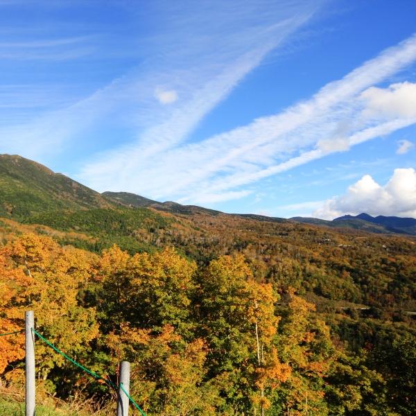 赤・黄・オレンジに染まる秋の北横岳。