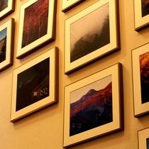 【館内】四季折々の美しい蓼科の写真。是非ご覧ください。