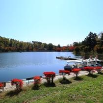 抜けるような青空と真っ赤なドウダンツツジ、穏やかな秋の蓼科湖。