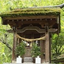 日本庭園_10