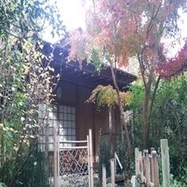 中庭の茶室