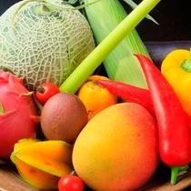 旬の野菜と果物
