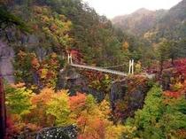 紅葉のわたらっしゃいつり橋
