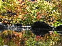 紅葉の露天風呂