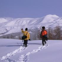 【観光】スノーシュー イメージ画像