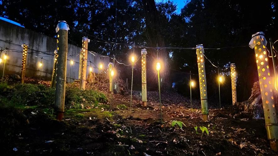 E棟敷地内の竹灯り