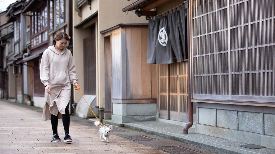 お散歩(イメージ)