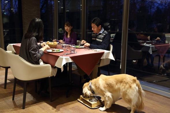 【1のつく日限定】《わんの日特別プラン》大人1名につき愛犬1頭無料(夕:レストラン/朝:レストラン)