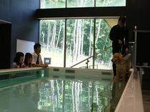 いよいよ、入水。プール内の水温は30℃前後に保たれています。