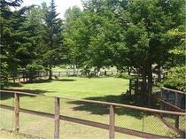 園内には、ドッグランも併設しております。