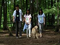 『森のドッグラン』内を散策。