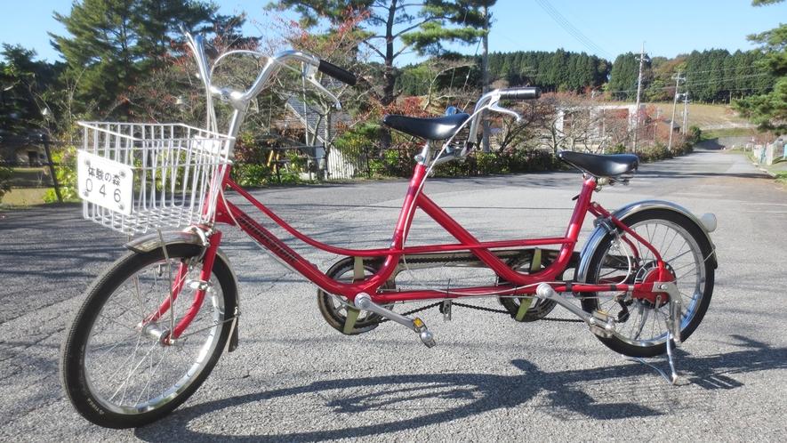 *【レンタサイクル】2人用自転車でサイクリングを満喫(有料)