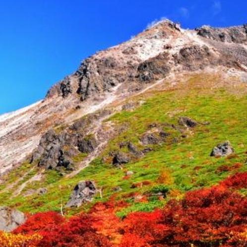 【茶臼岳の紅葉】10月中旬から11月上旬が見頃となります