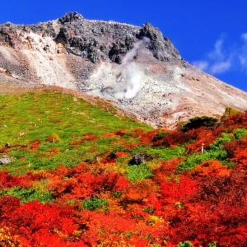 【茶臼岳の紅葉】当館から車で約20分の距離にあります