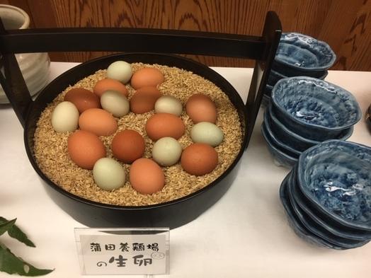 【1日5組限定】新米祭り1泊2食付プラン