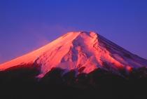 富士山(世界遺産)