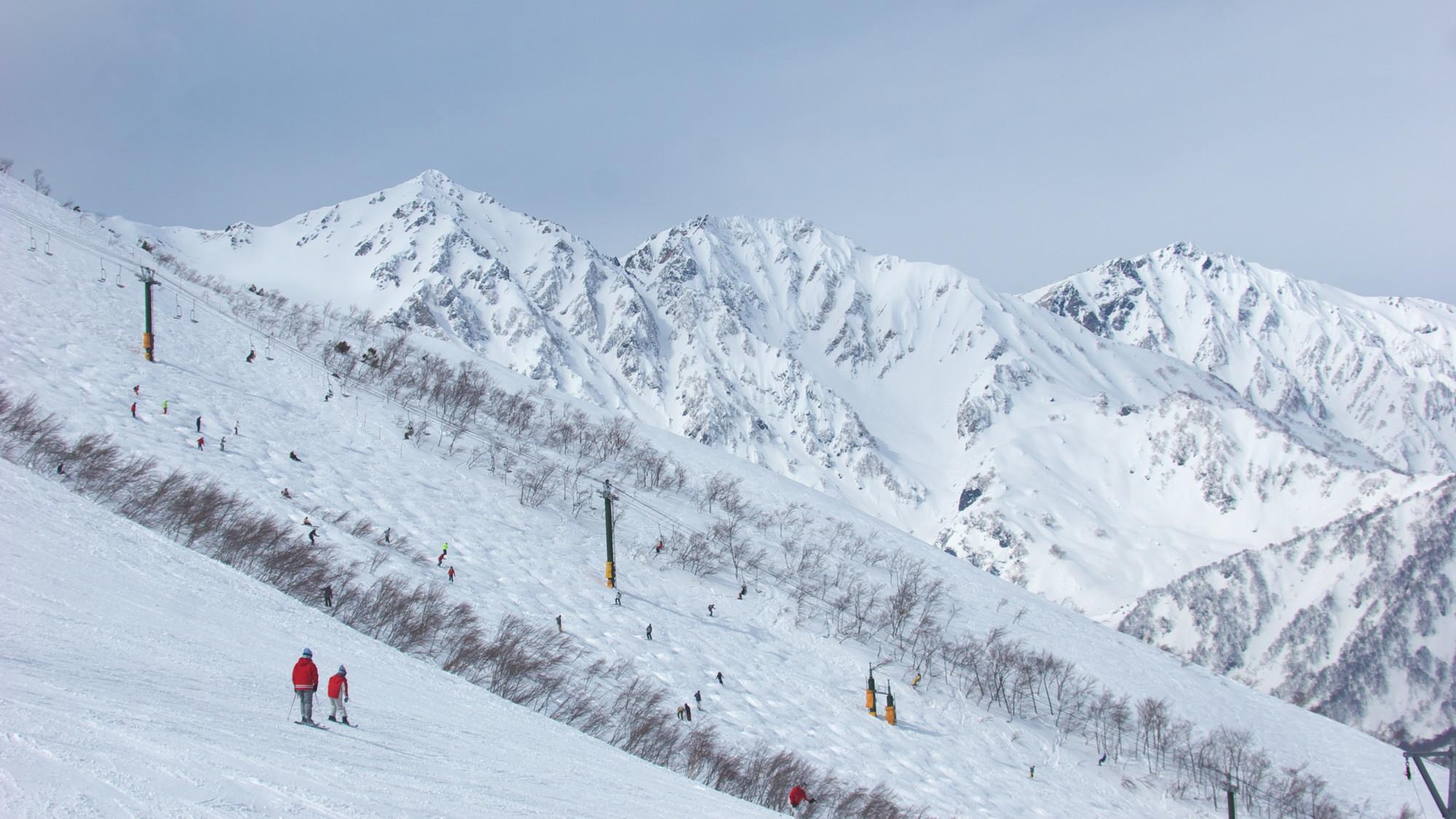 白馬八方尾根スキー場(写真提供:長野県観光機構)