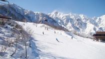*白馬五竜スキー場(エイブル白馬)/初心者から上級者まで幅広く楽しめるゲレンデです。