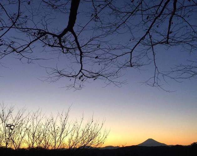 夜の鎌倉湾