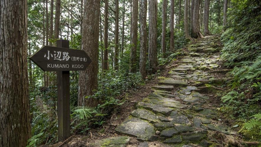 【熊野参詣道小辺路】真言密教の総本山高野山から熊野本宮大社にいたる全長72kmの聖なる祈りの道です。
