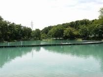 ニレ池 フィッシングセンター