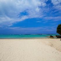 サンゴの砂の白浜は、空の青と海のグリーンをより一層際立たせます。