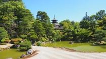 仁和寺 新緑