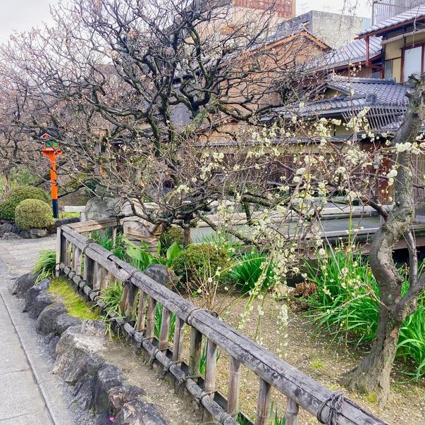 祇園・白川