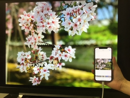 iPhoneスクリーンを大画面で楽しむ!おこもりステイプラン♪