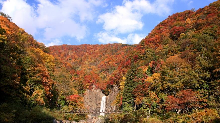 **迫力満点、落差55mの「日本の滝百選」苗名滝。紅葉の見頃は10月中旬~11月上旬
